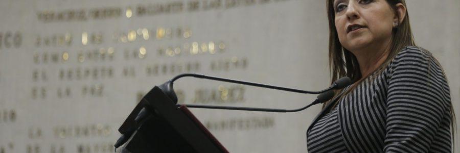 Mayor recurso al campo y obra pública en presupuesto 2019: Judith Pineda